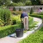 Au jardin techniques de jardinage for Cisaille electrique pour jardin