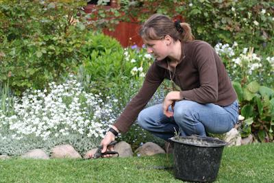 Au jardin jardinage et mal de dos for Technique jardinage