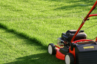Au jardin que faire des tontes de pelouse - Tondre la pelouse anglais ...