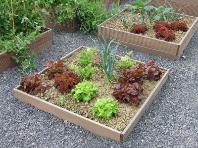 Au jardin potager de poche - Carre de jardin potager ...