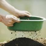 Du compost fin